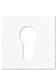 Jung AS 500 Schlüsselschalter-Abdeckungen
