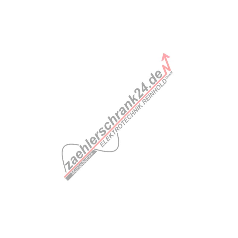 Zähleranschlußsäule TAB 2008 (1Zähler ohne TSG) -Verteiler 3x12TE, freies Montagefeld 09.88.1P11HSAbV3
