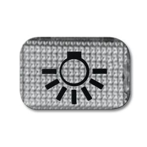 Busch-Jaeger Symbol 2145 LI Licht
