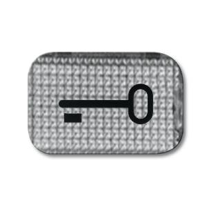Busch-Jaeger Symbol 2145 TR Tür