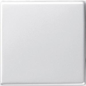 Gira Wippe 029603 System 55 reinweiss glänzend (029603) für Aus/Wechselschalter