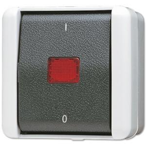 Jung AP-Schalter 802KOW 2polig