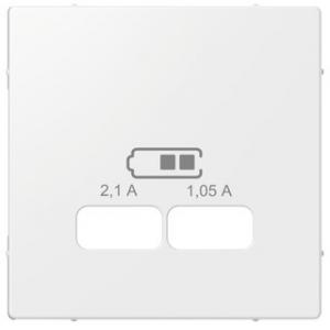 Merten Zentralplatte USB-Ladestationeinsatz polarweiss glänzend MEG4367-0319
