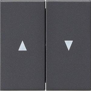 GIRA Serienwippe 029428 + Pfeilsymbol System 55 anthrazit
